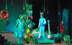 Alice in Wonderland 2011-1
